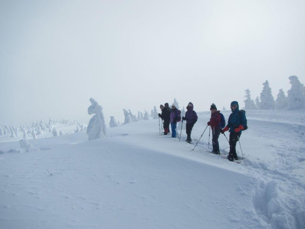 雪原にはミドルモンスター達